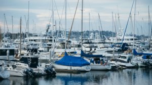 Yachts in harbour marina
