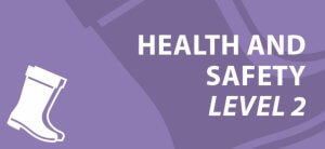 Health & Safety Level 2